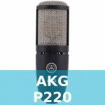 AKG P220 Test