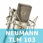 Neumann TLM 103 Test